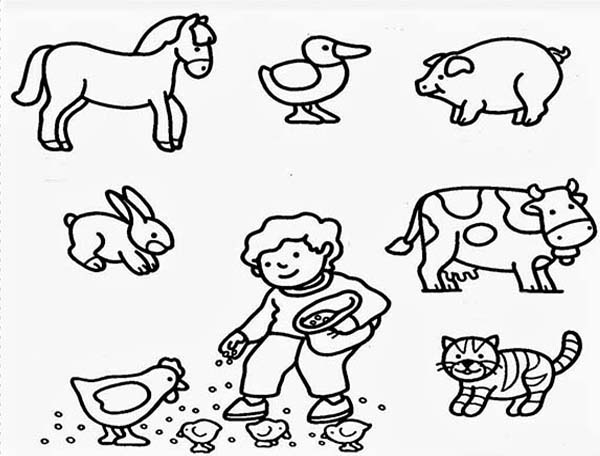 Farm Animals coloring #1, Download drawings
