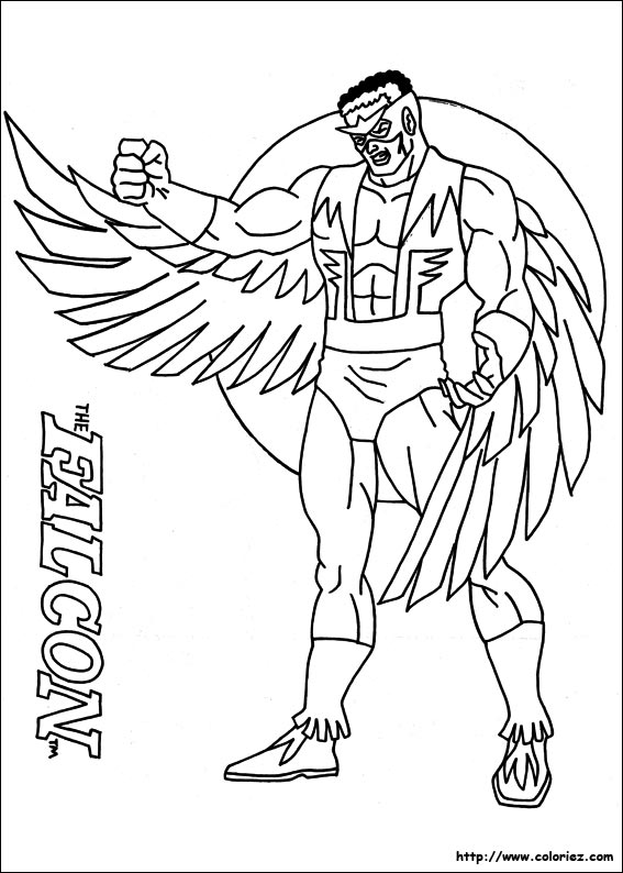 Faucon coloring #4, Download drawings