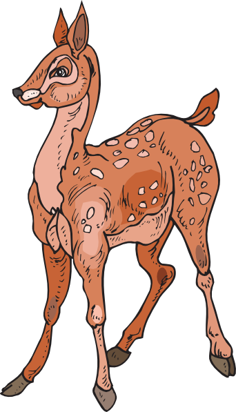 Fawn clipart #11, Download drawings
