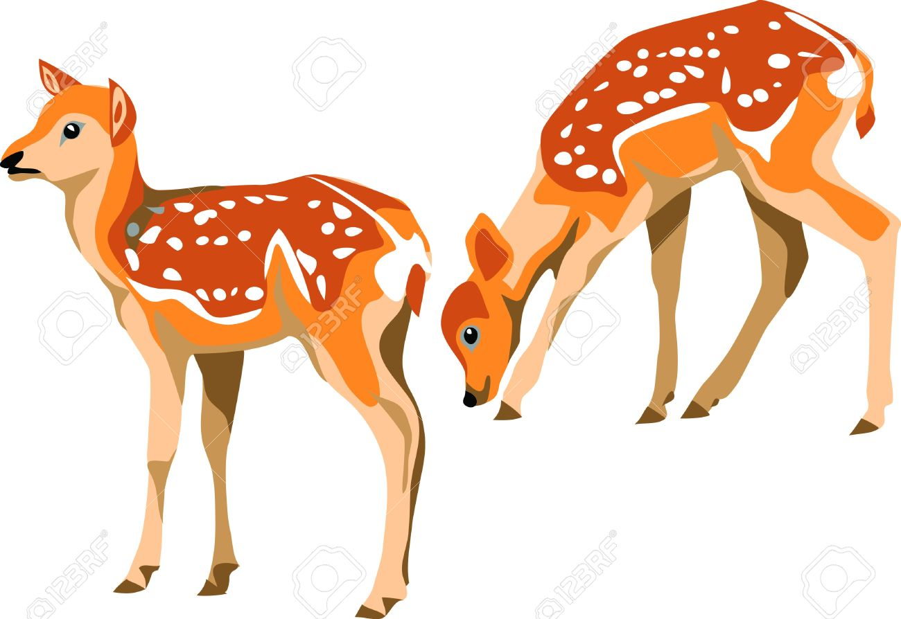 Fawn clipart #9, Download drawings