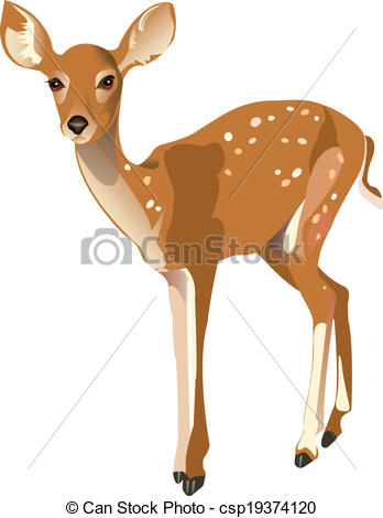 Fawn clipart #17, Download drawings