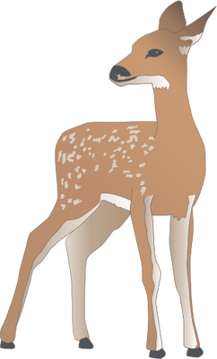 White-tailed Deer svg #17, Download drawings