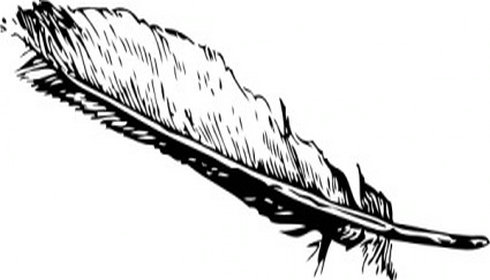 Feather clipart #8, Download drawings