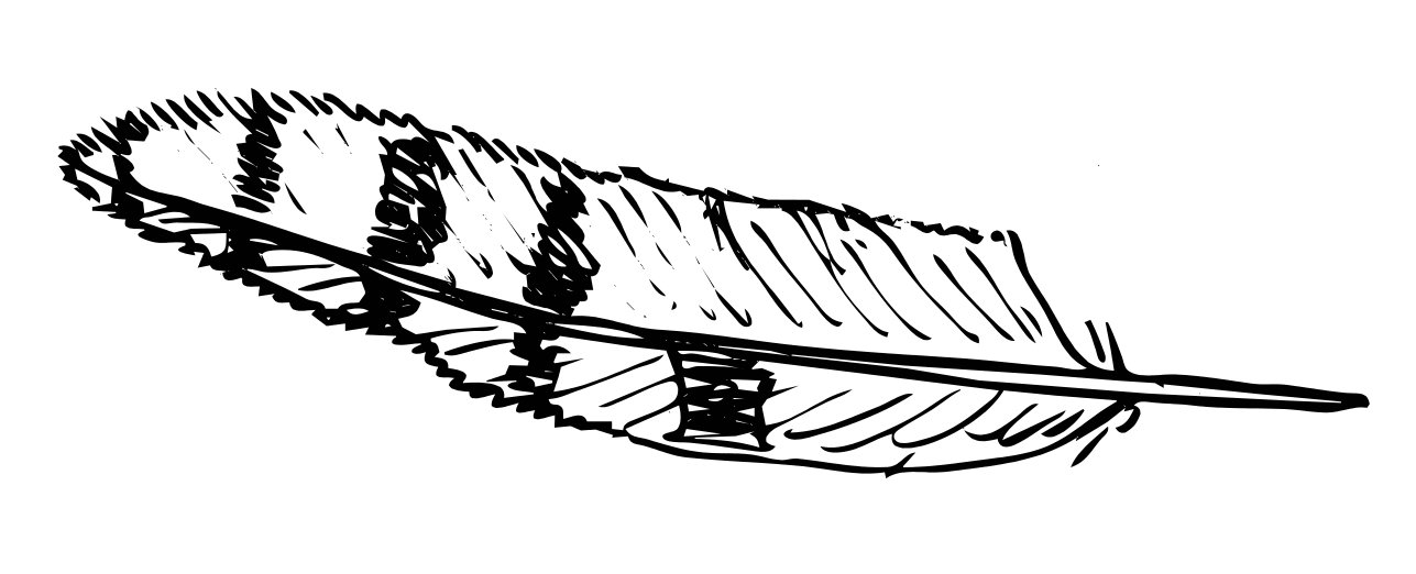 Feather coloring #19, Download drawings