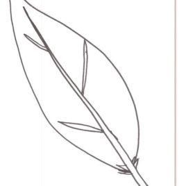Feather coloring #13, Download drawings