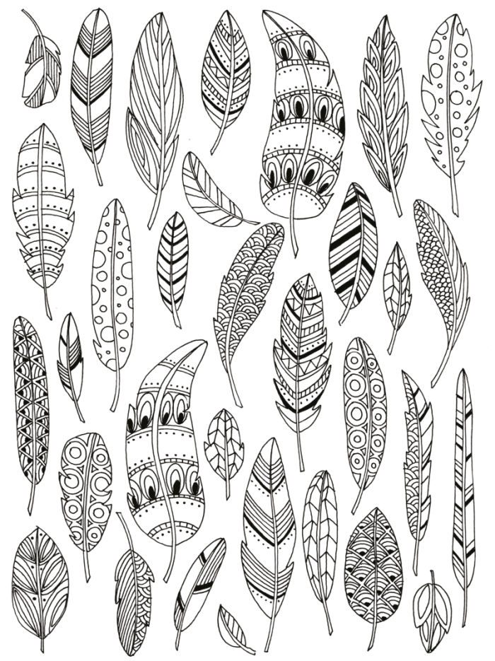 Feather coloring #5, Download drawings