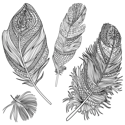 Feather coloring #6, Download drawings