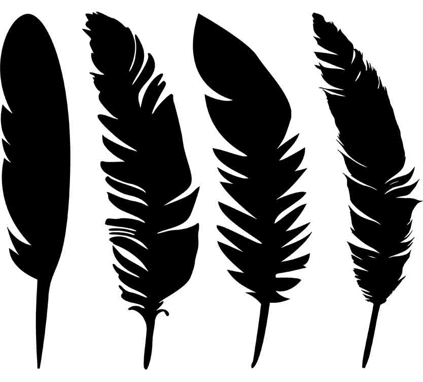 feather svg free #754, Download drawings