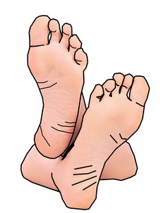 Feet clipart #2, Download drawings