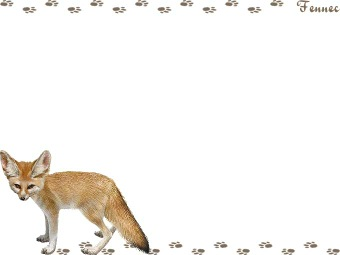 Fennec Fox clipart #14, Download drawings