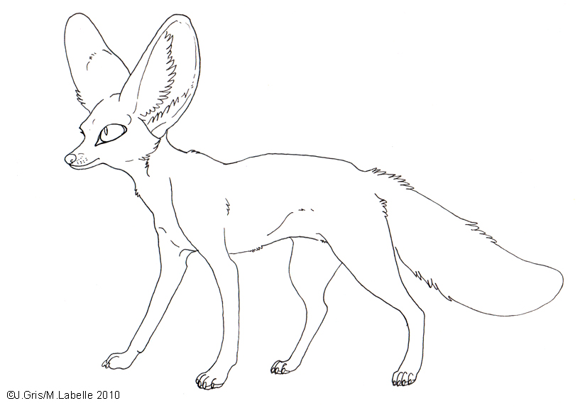 Fennec Fox clipart #7, Download drawings