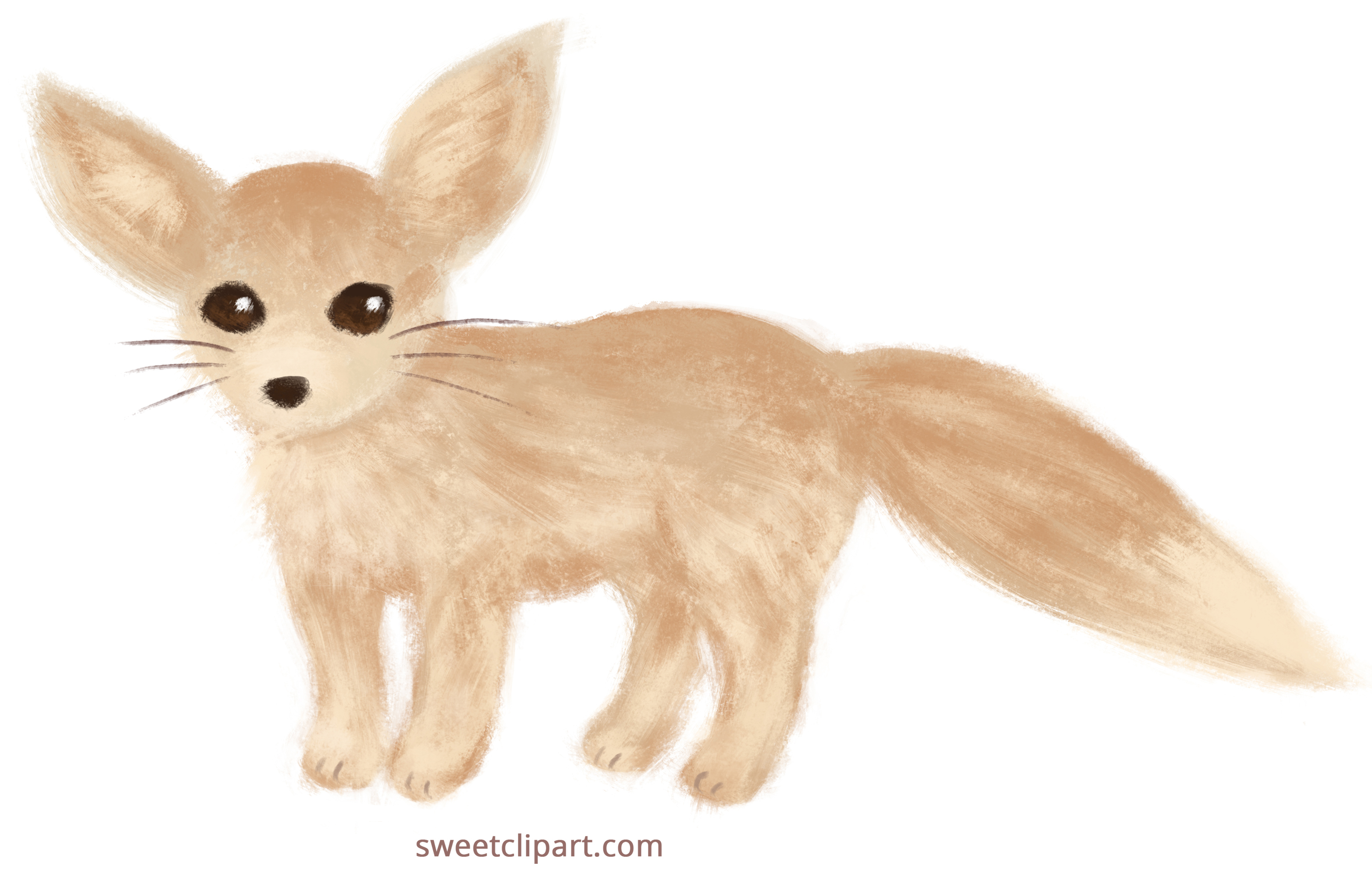 Fennec Fox clipart #4, Download drawings