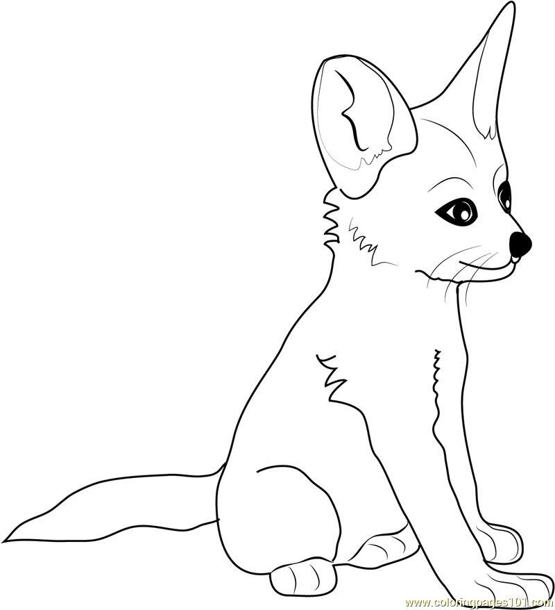 Fennec Fox coloring #19, Download drawings
