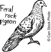 Feral clipart #6, Download drawings