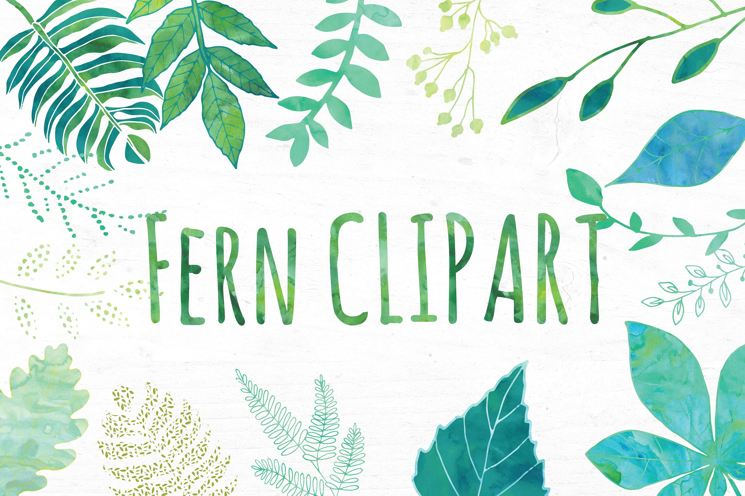 Fern clipart #1, Download drawings