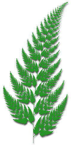 Fern clipart #9, Download drawings