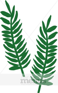 Fern clipart #13, Download drawings