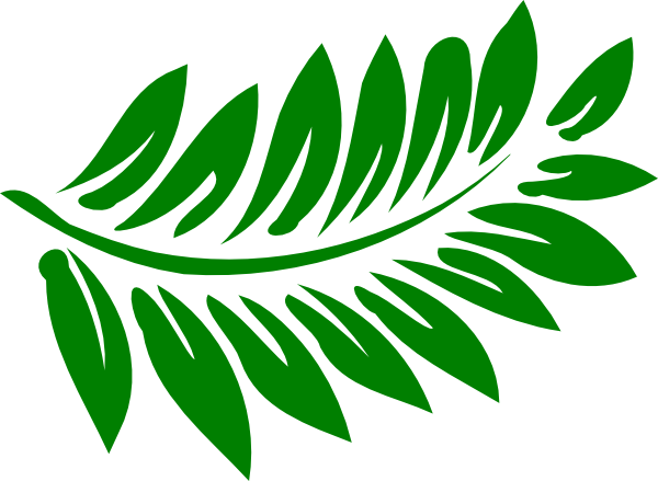 Fern clipart #11, Download drawings
