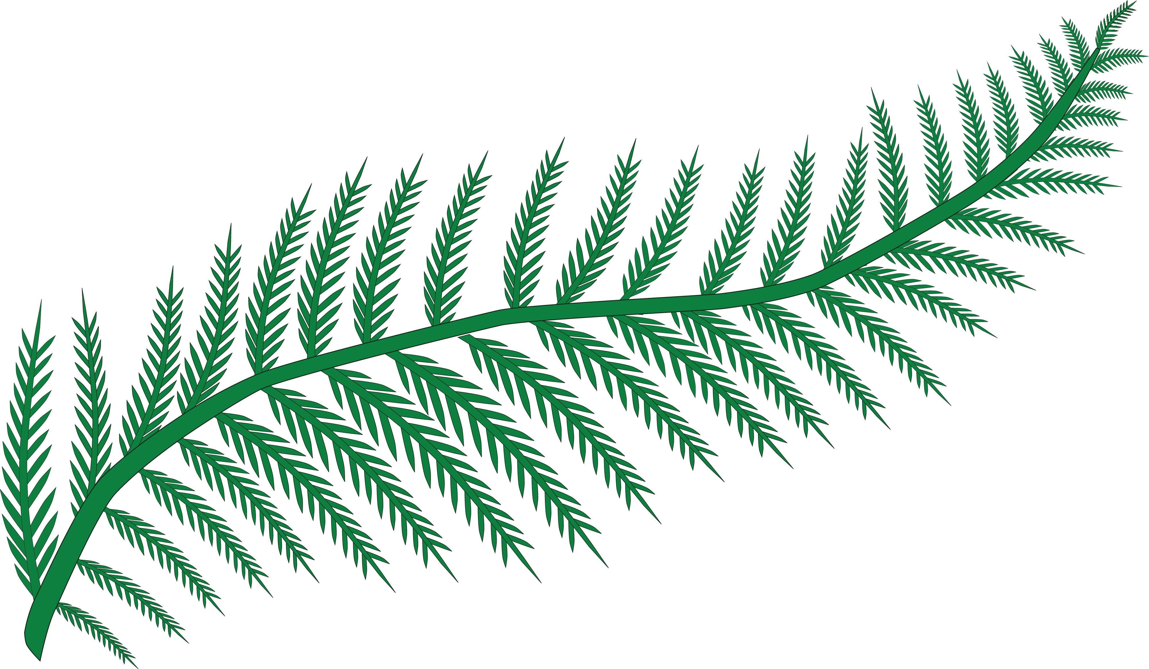 Fern svg #9, Download drawings