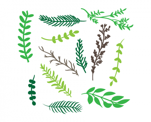 Fern svg #15, Download drawings