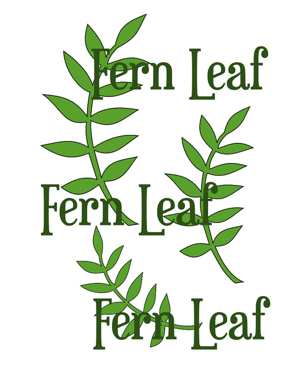 Fern svg #3, Download drawings