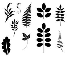 Fern svg #18, Download drawings