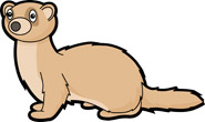 Ferret clipart #11, Download drawings