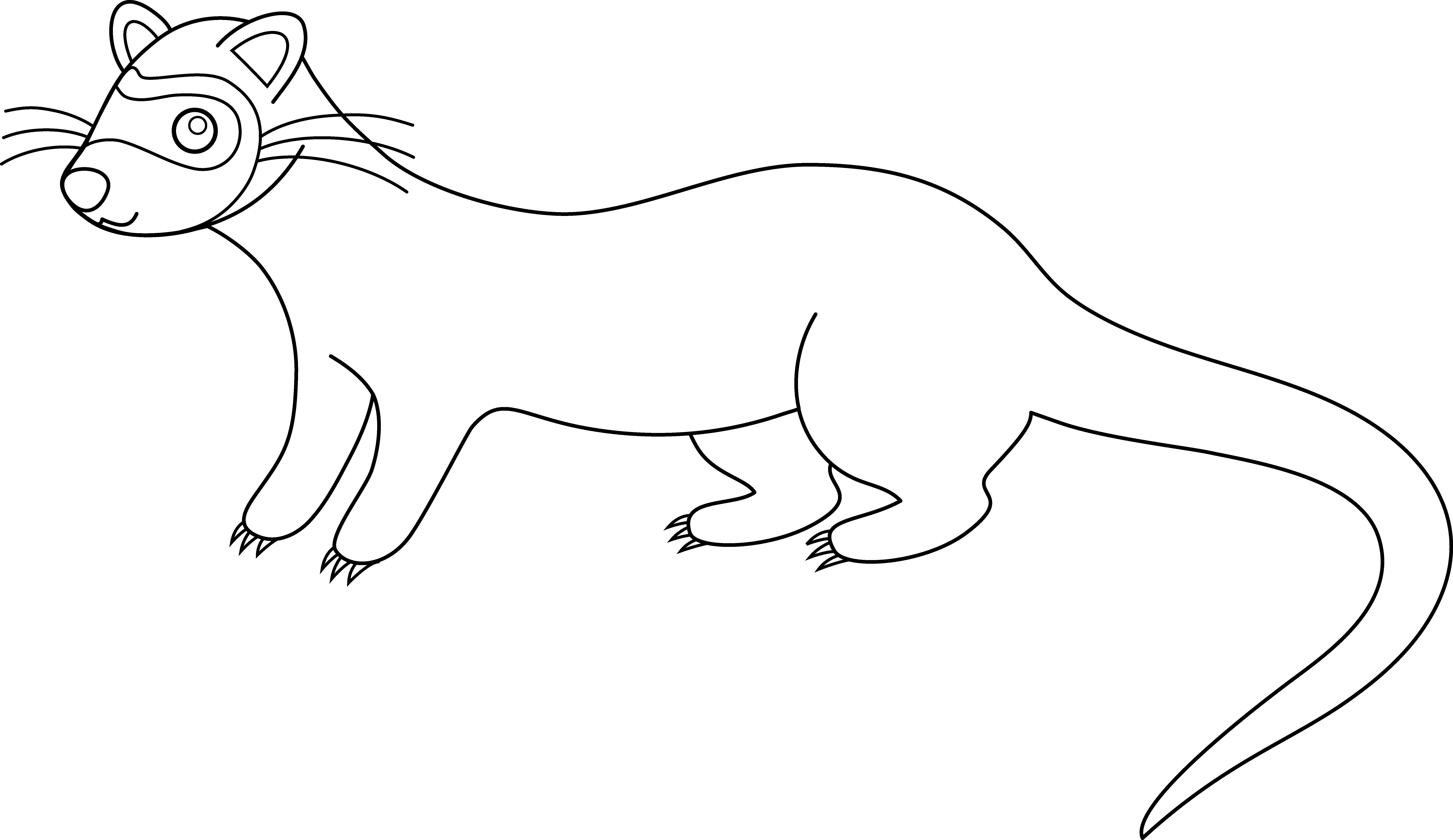 Ferret clipart #3, Download drawings