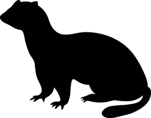 Ferret clipart #6, Download drawings