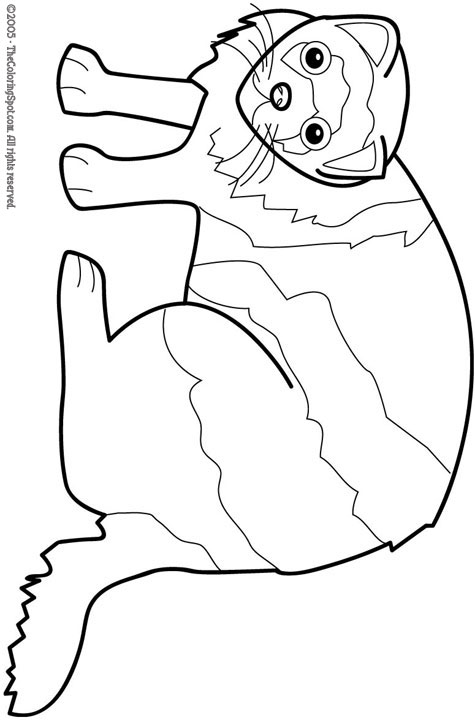 Ferret coloring #11, Download drawings