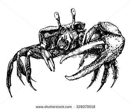 Fiddler Crab clipart #20, Download drawings