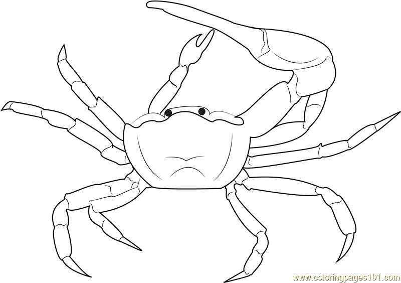 Fiddler Crab coloring #2, Download drawings