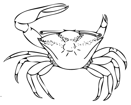 Fiddler Crab coloring #2, Download drawings