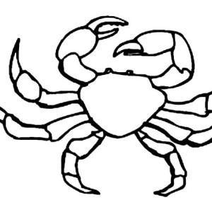 Fiddler Crab coloring #9, Download drawings