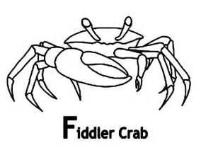 Fiddler Crab coloring #18, Download drawings
