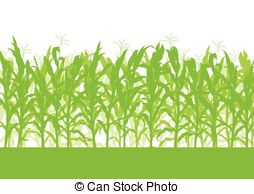 Cornfield clipart #20, Download drawings