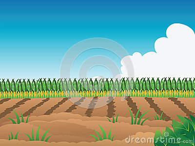 Field clipart #9, Download drawings