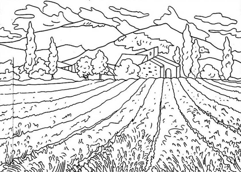 coloring pages of fields | Feilds coloring, Download Feilds coloring for free 2019