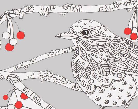 Fieldfare coloring #1, Download drawings