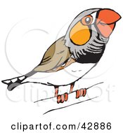 Finch clipart #2, Download drawings