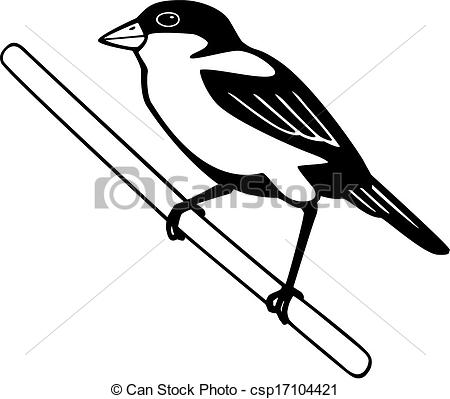 Finch clipart #17, Download drawings