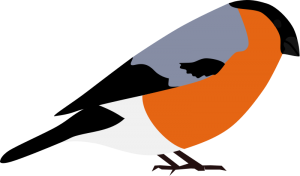 Finch clipart #15, Download drawings