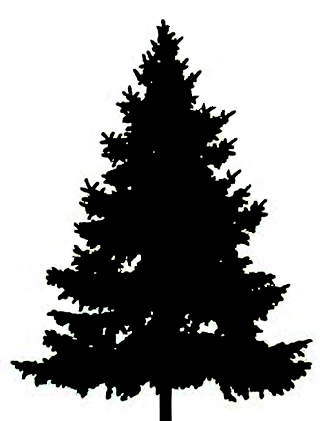 Fir Tree clipart #14, Download drawings