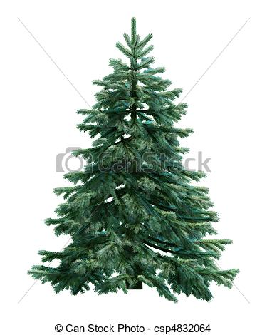 Fir Tree clipart #8, Download drawings