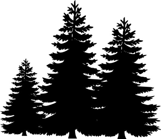 Pine Tree clipart #2, Download drawings