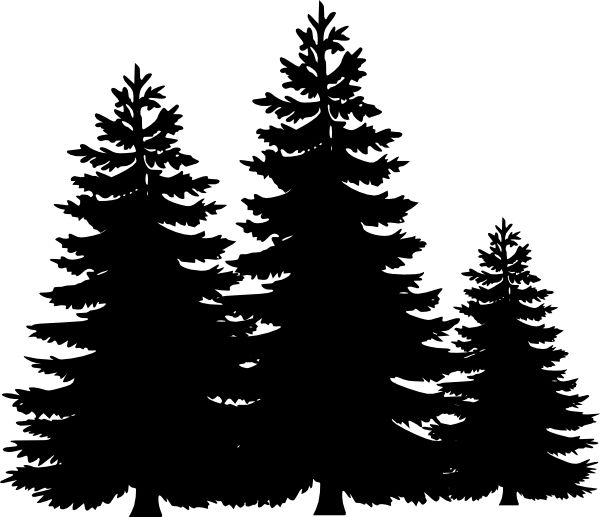 Fir Tree clipart #2, Download drawings