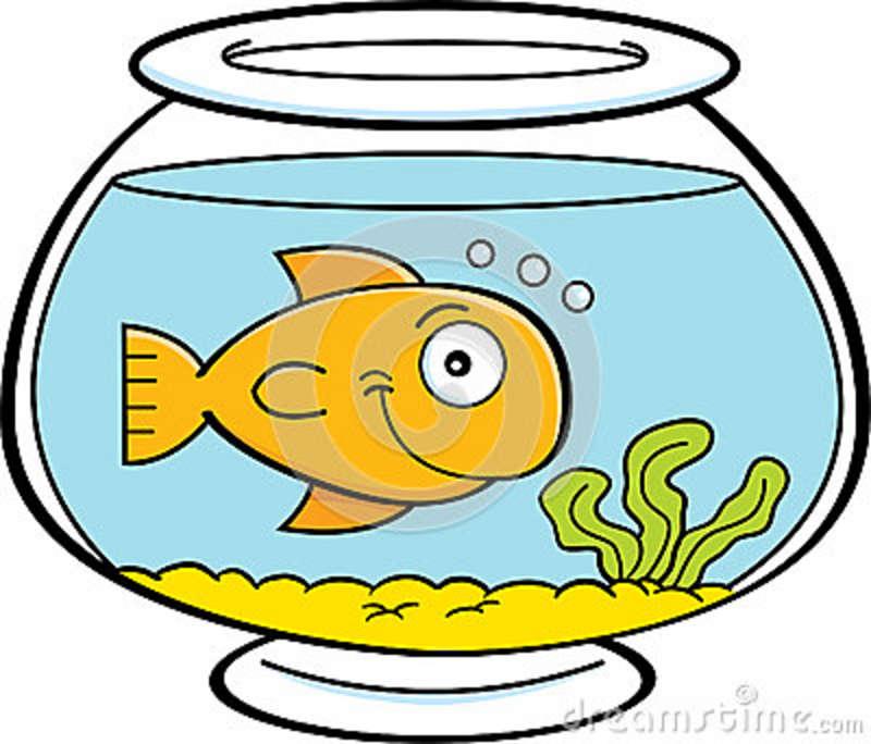 Fish Bowl clipart #7, Download drawings
