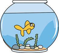 Fish Bowl clipart #3, Download drawings