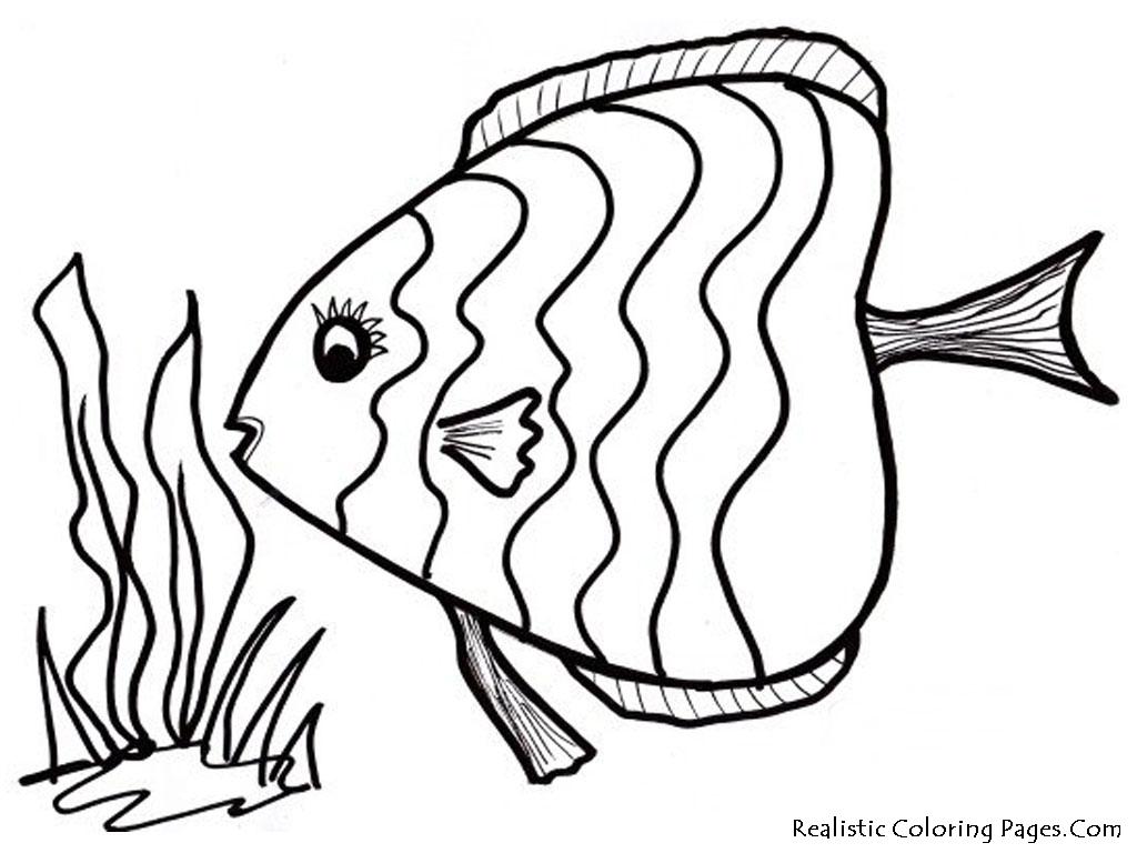 Fish coloring #1, Download drawings