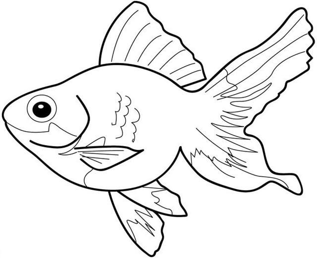 Fish coloring #5, Download drawings